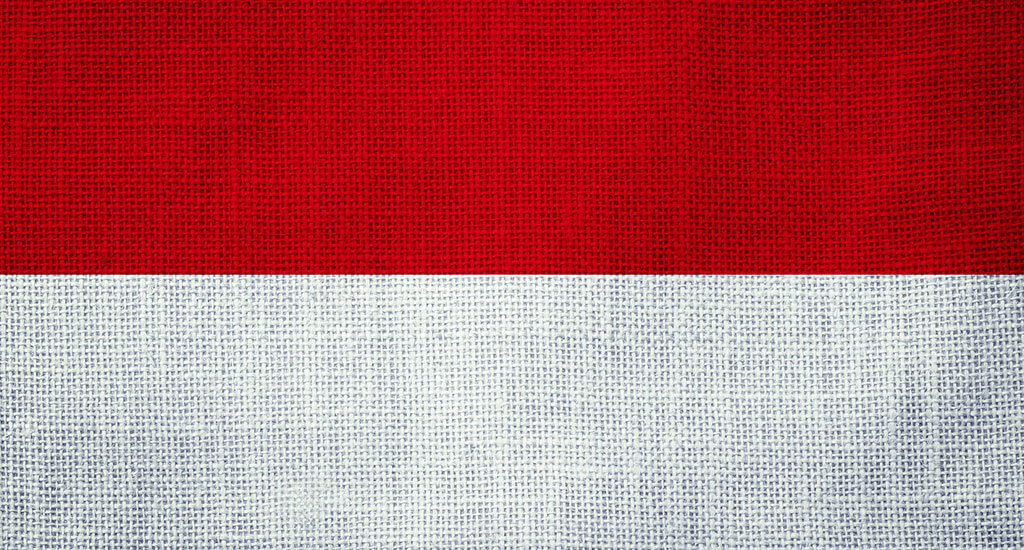 general_indonesia_flag