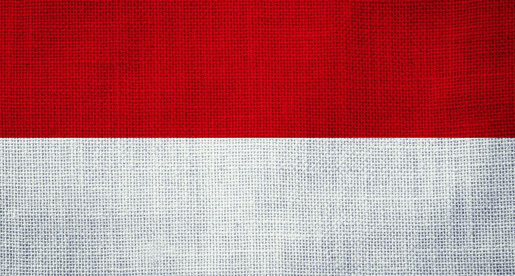 general_indonesia_flag