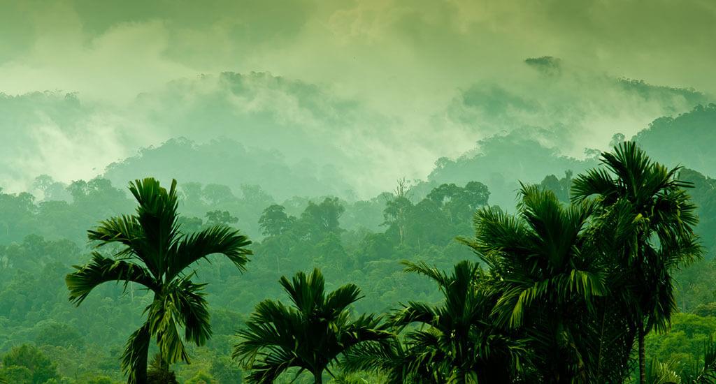 Bintan Island Sumatra